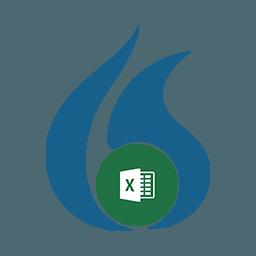 Dragon Microsoft Excel