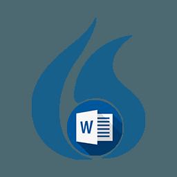 Dragon Microsoft Word